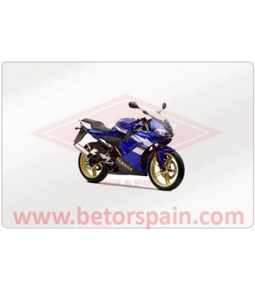 Yamaha TZR 50 R 2004 Super Reinforced